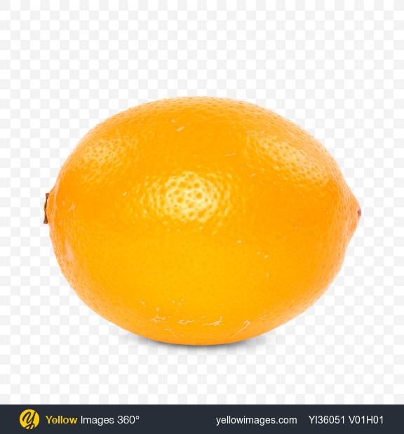 Download Orange Lemon Transparent PNG on Yellow Images 360°