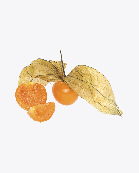 Physalis Berry with Husk and Slices