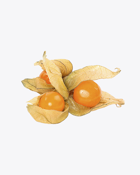 Physalis Berries with Husk