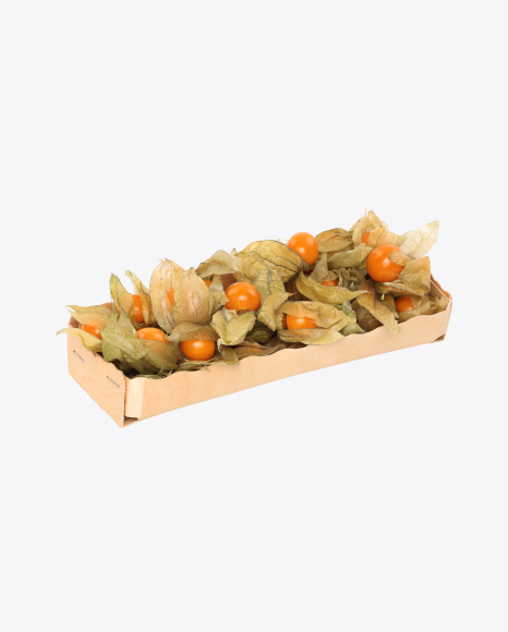 Physalis with Husk in Box