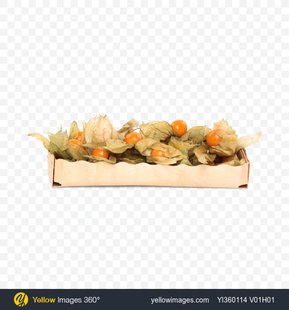 Download Physalis with Husk in Box Transparent PNG on Yellow Images 360°