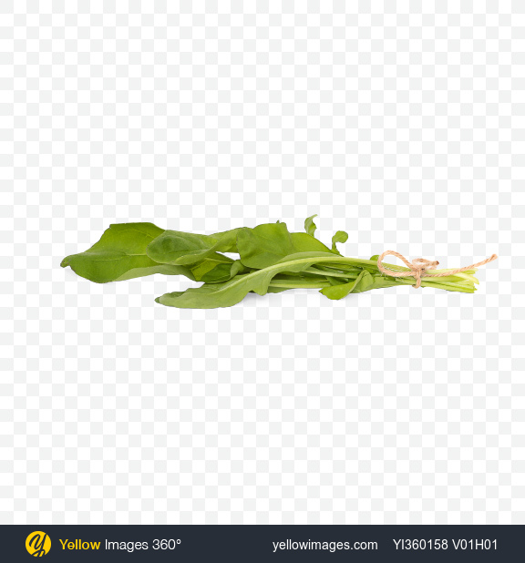 Download Bunch of  Rucola Leaves Transparent PNG on Yellow Images 360°