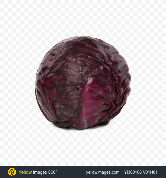 Download Red Cabbage Transparent PNG on Yellow Images 360°