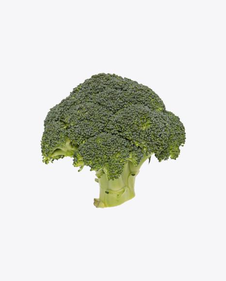 Broccoli Inflorescence