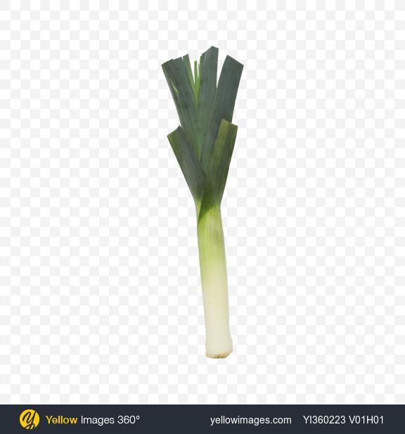 Download Leek Onion Transparent PNG on PNG Images