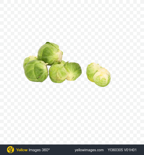 Download Brussels Sprouts Transparent PNG on Yellow Images 360°
