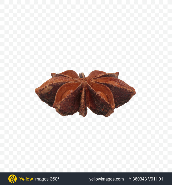 Download Star Anise Transparent PNG on Yellow Images 360°
