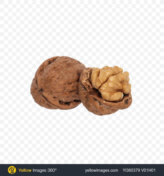 Download Walnut and Half Transparent PNG on Yellow Images 360°