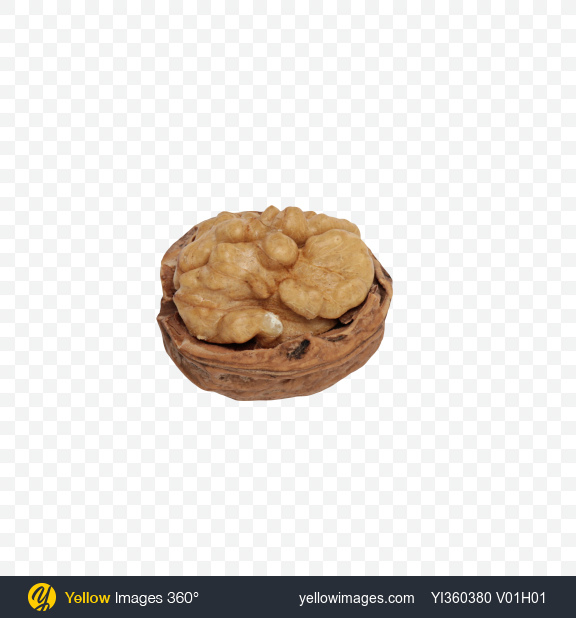 Download Half of Walnut Transparent PNG on Yellow Images 360°