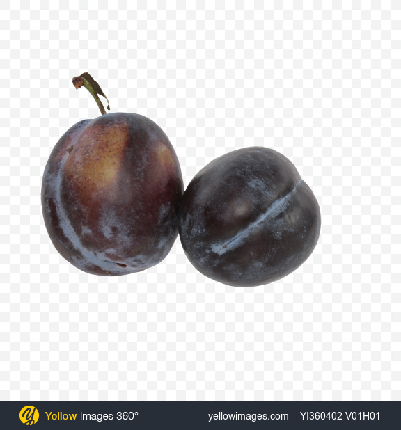 Download Two Blue Plums Transparent PNG on Yellow Images 360°
