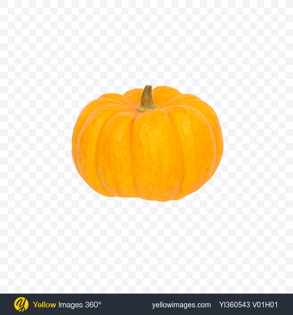 Download Yellow Pumpkin Transparent PNG on PNG Images