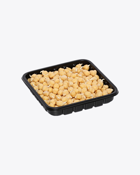 Sprouted Chickpeas in Tray