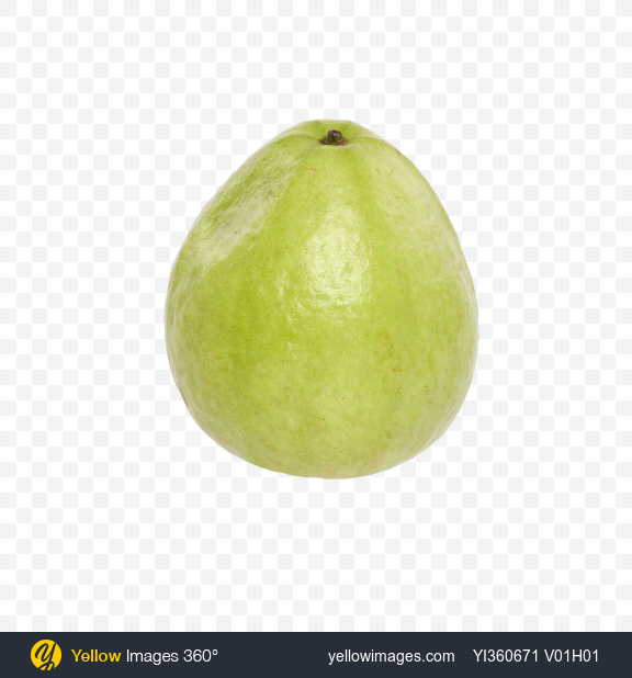Download Guava Fruit Transparent PNG on Yellow Images 360°