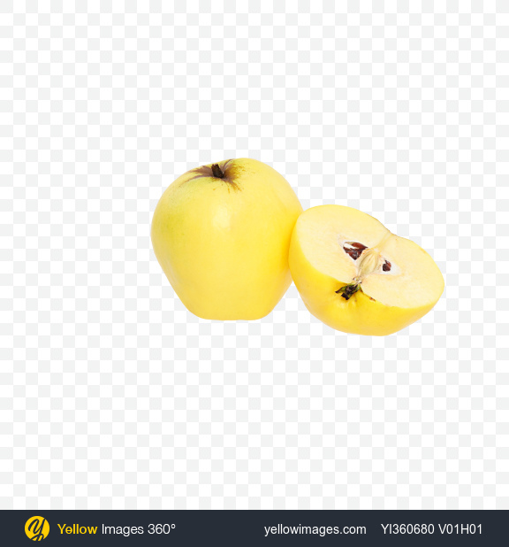 Download Quince Fruit and Half Transparent PNG on Yellow Images 360°