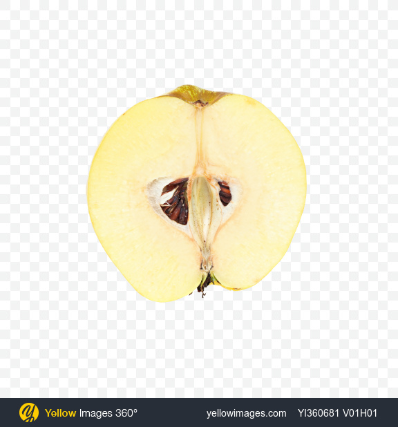 Download Half of Quince Fruit Transparent PNG on Yellow Images 360°