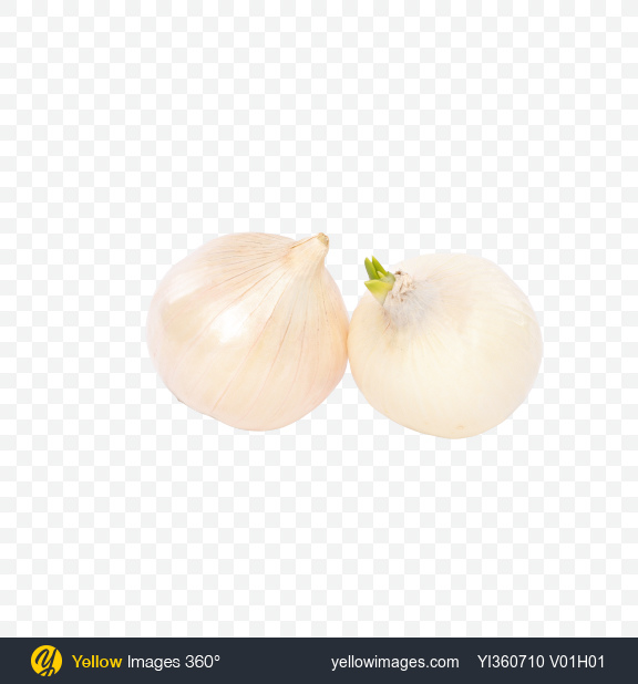 Download Two White Onion Bulbs Transparent PNG on PNG Images