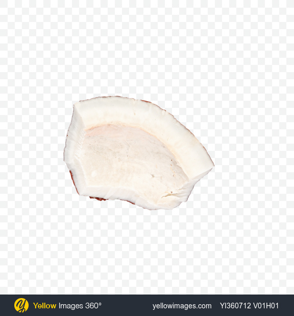 Download Coconut Slice Transparent PNG on Yellow Images 360°