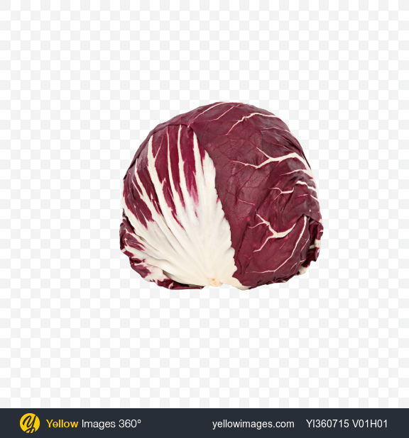 Download Radicchio Salad Transparent PNG on Yellow Images 360°