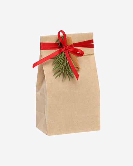 Christmas Gift in Paper Bag with Decor