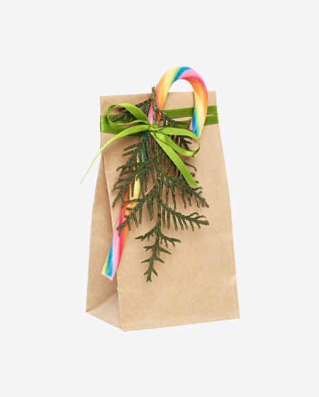 Christmas Gift in Paper Bag with Candy Cane