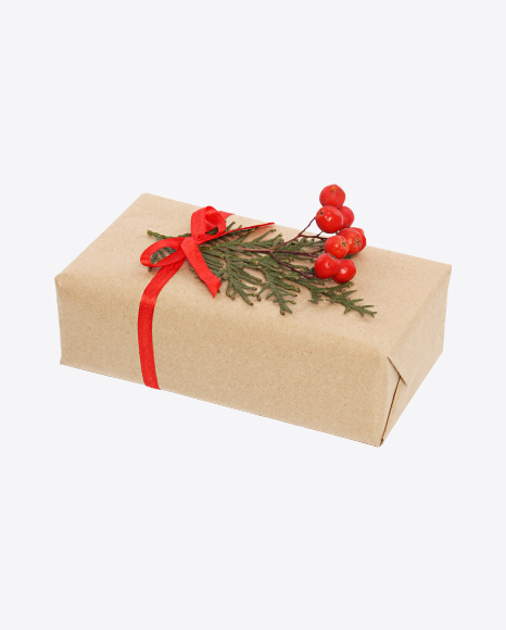 Christmas Gift Box Wrapped in Craft Paper with Rowanberry Branch