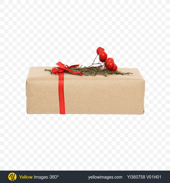 Download Christmas Gift Box Wrapped in Craft Paper with Rowanberry Branch Transparent PNG on YELLOW Images