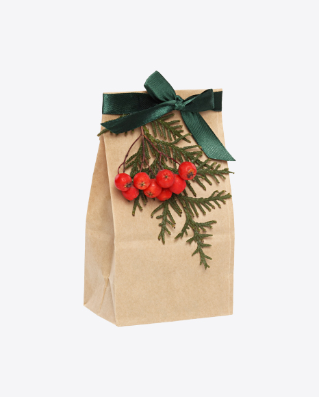 Christmas Gift in Paper Bag with Rowanberry Branch