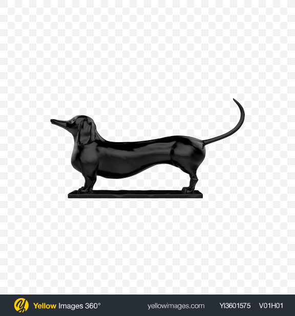 Download Black Dachshund Sculpture Transparent PNG on Yellow Images 360°
