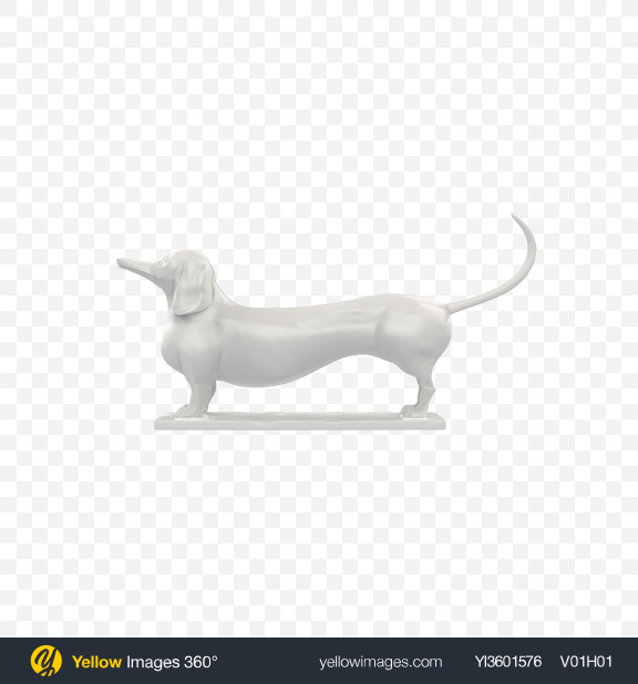 Download White Dachshund Sculpture Transparent PNG on Yellow Images 360°