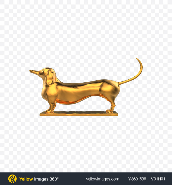 Download Gold Dachshund Sculpture Transparent PNG on Yellow Images 360°
