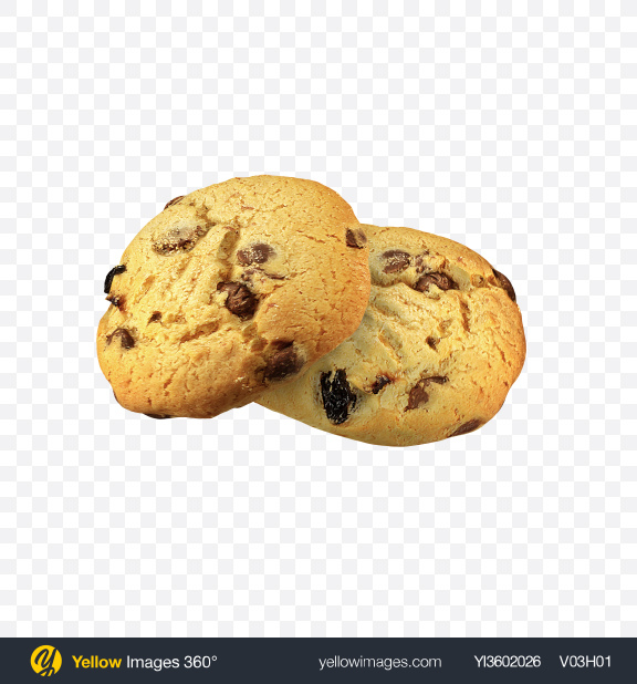 Download Two Chocolate Chip Cookies Transparent PNG on Yellow Images 360°