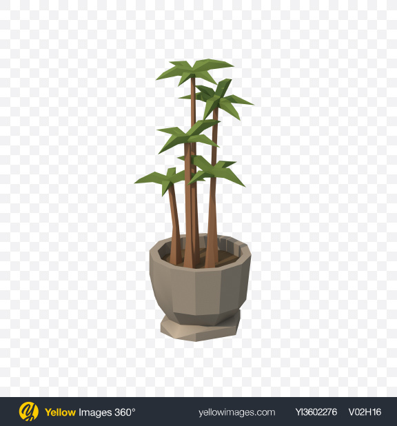 Download Low Poly Potted Plant Transparent PNG on Yellow Images 360°