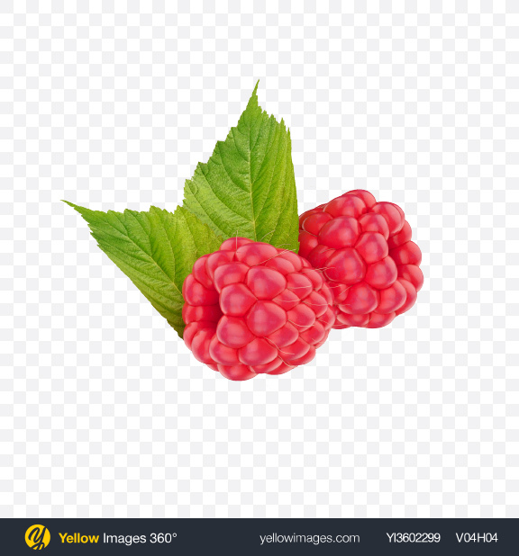 Download Raspberries Transparent PNG on Yellow Images 360°