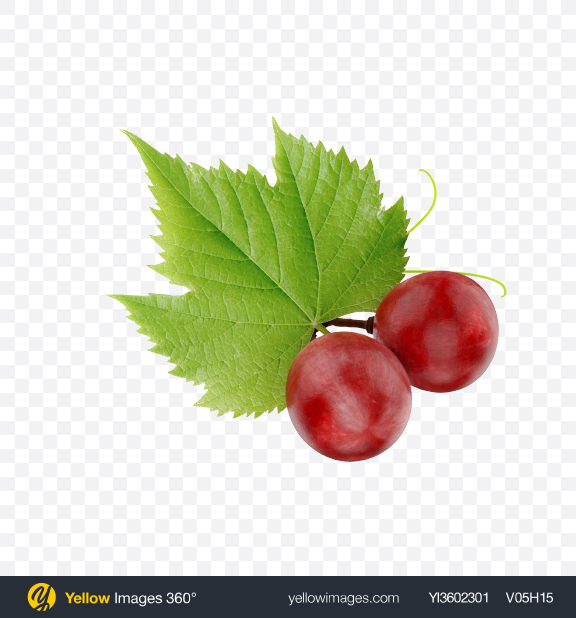 Download Grapes Transparent PNG on Yellow Images 360°
