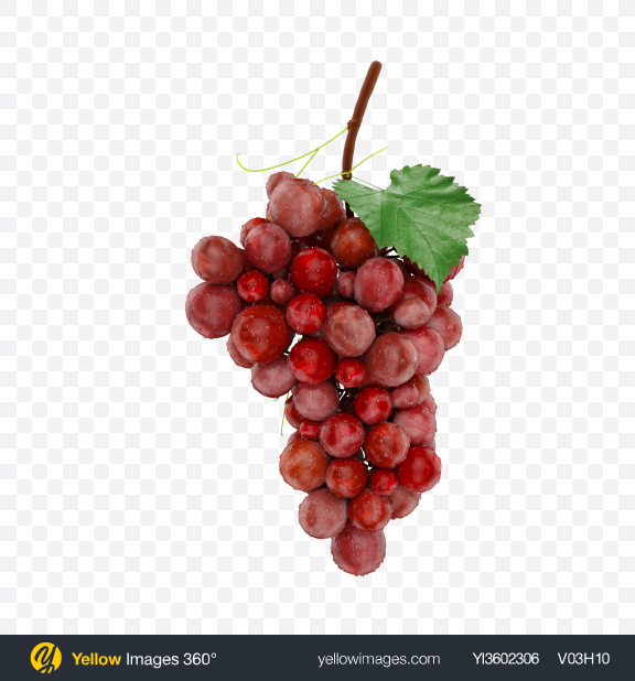 Download Bunch of Grapes with Water Drops Transparent PNG on Yellow Images 360°