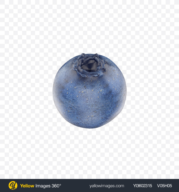 Download Blueberry Transparent PNG on Yellow Images 360°