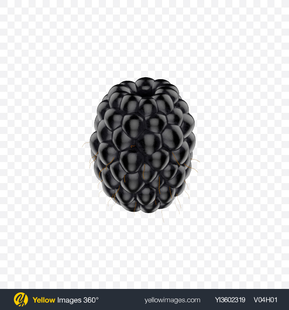 Download Blackberry Transparent PNG on Yellow Images 360°