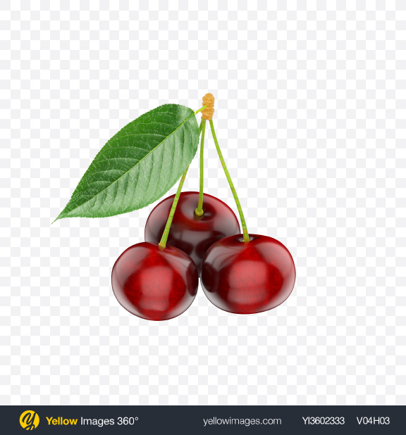 Download Cherries Transparent PNG on Yellow Images 360°