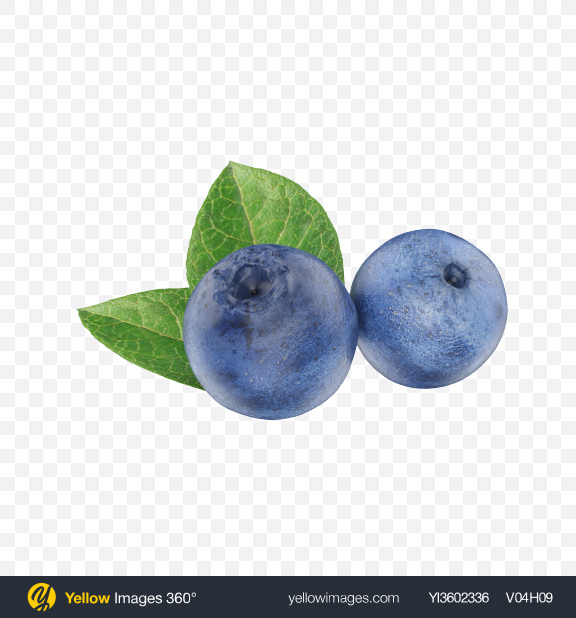 Download Blueberries Transparent PNG on Yellow Images 360°