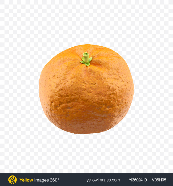 Download Mandarin orange Transparent PNG on Yellow Images 360°