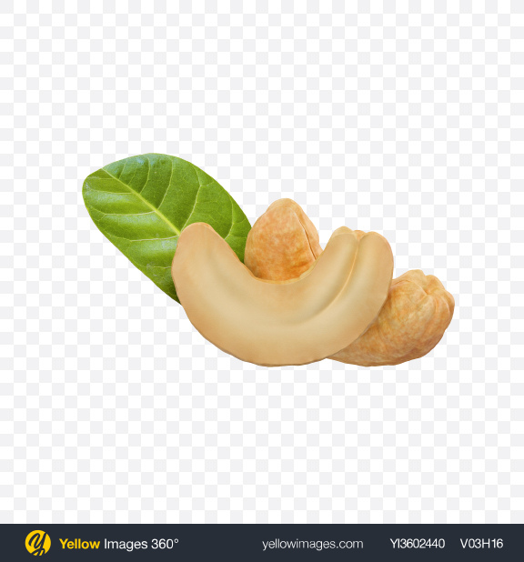 Download Cashews Transparent PNG on Yellow Images 360°
