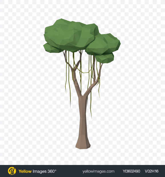 Download Low Poly Liana Tree Transparent PNG on Yellow Images 360°