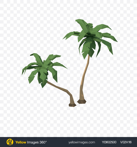 Download Low Poly Palm Trees Transparent PNG on Yellow Images 360°