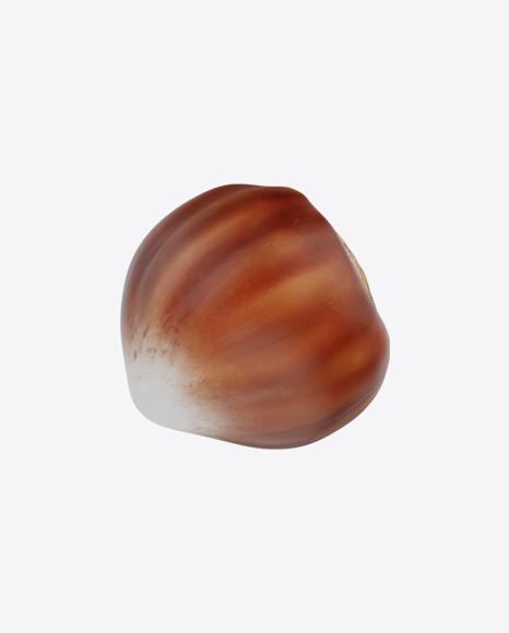 Hazelnut Shell