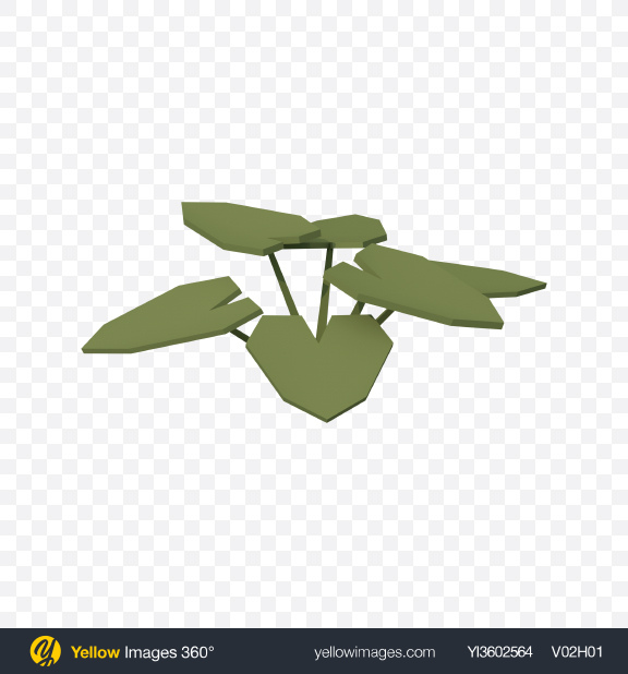 Download Low Poly Fern Transparent PNG on Yellow Images 360°