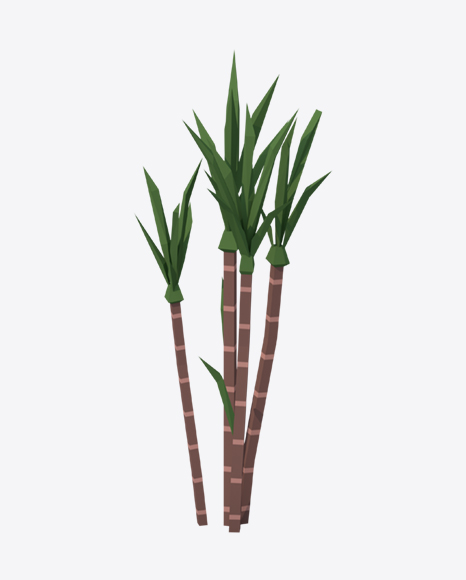Low Poly Sugarcane