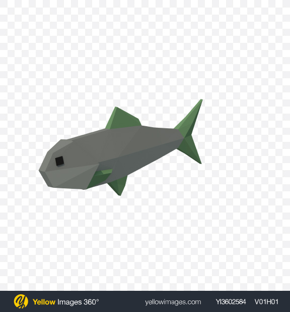 Download Low Poly Fish Transparent PNG on Yellow Images 360°