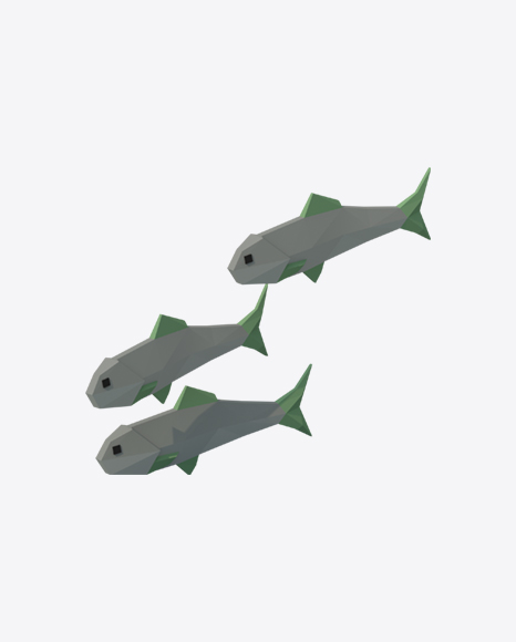Low Poly Fishes