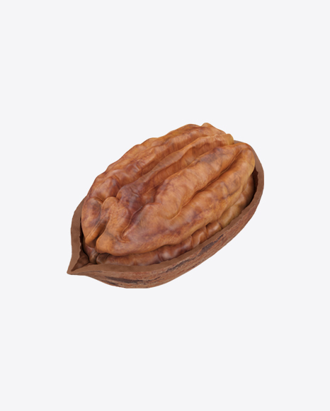 Pecan in Shell