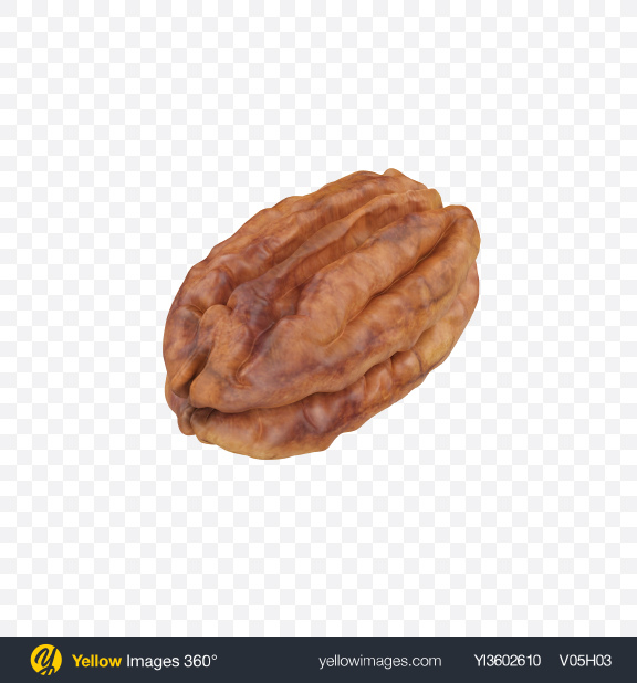 Download Pecan Transparent PNG on Yellow Images 360°